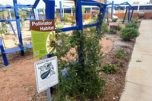 Monarch Watch Waystation Network